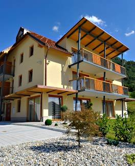 Sobe, rooms, apartments Laško 100