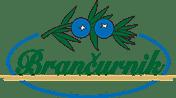 Gostilna Brančurnik, Prevalje logo image