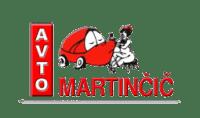 Avto Martinčič, Popravilo avtomobila po toči, Ilirska Bistrica, Obala Kras logo image