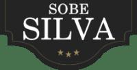 Nočitve, paragliding, rooms, owernights, Tolmin - Sobe Silva, Soča logo image
