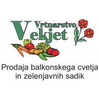 Prodaja rož, prodaja sadik, vrtnarstvo Vekjet, Maribor, Štajerska