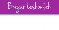 Računovodstvo Bregar Leskovšek Zagorje, Zasavje logo image