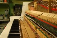 Uglaševanje in popravilo klavirjev, Koroška