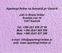 Apartmaji Hribar, Kamnik