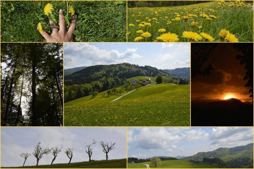 Turistična kmetija, Tourist farm, Škofja Loka gallery photo no.8