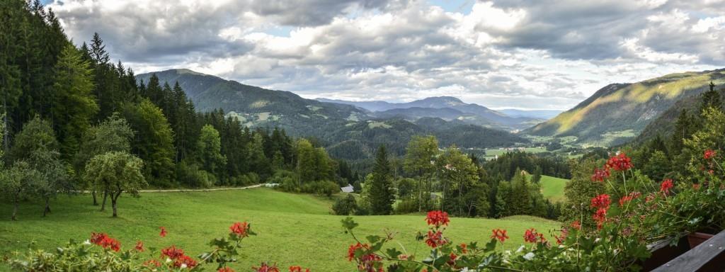 Turistična kmetija apartmajska hiša snovik planinarjenje, snovik gallery photo no.0