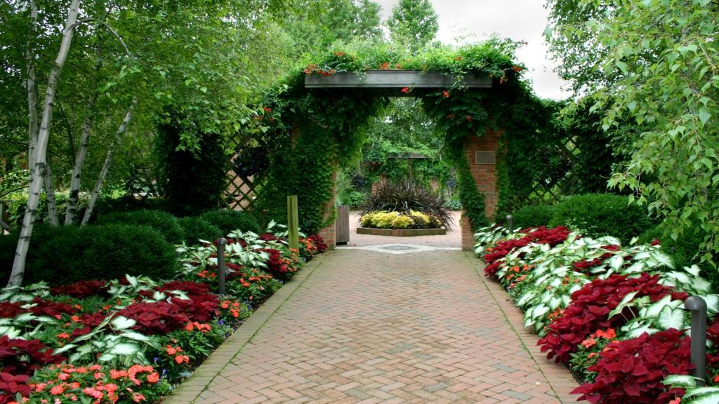 Palma vrtnarstvo urejanje okolice, Obala gallery photo no.10