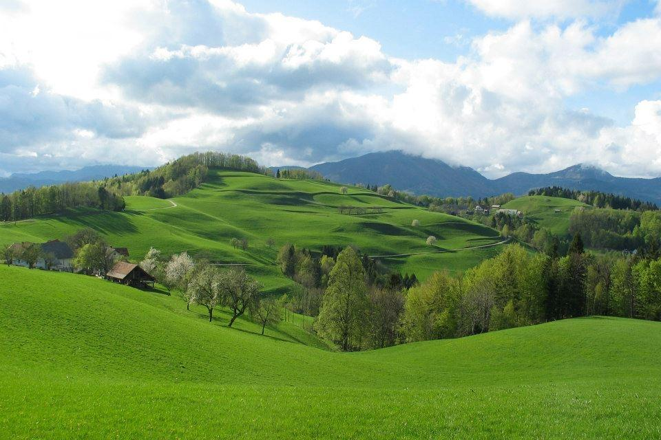 Turistična kmetija, Tourist farm, Škofja Loka gallery photo no.10