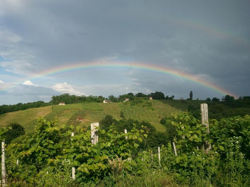 Turistična kmetija Dervarič, Pomurje gallery photo no.37