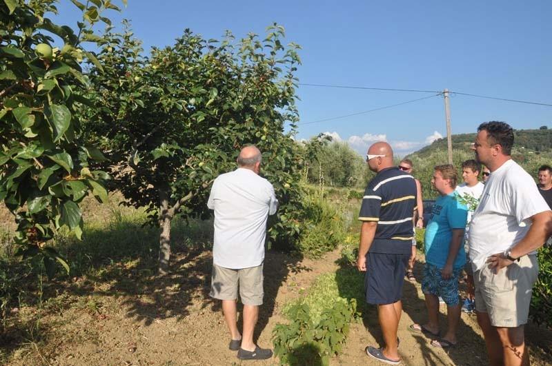 Kmetija in Izletniška kmetija Giassi gallery photo no.5