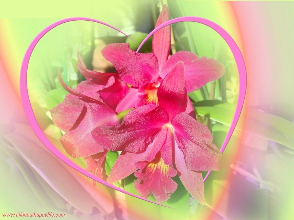 Cvetlični, Darilni Boutique Tila, Šmartno pri Litiji gallery photo no.5