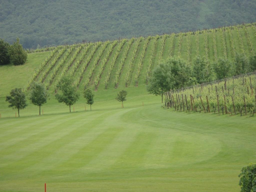 Golf turnir Zlati Grič gallery photo no.3