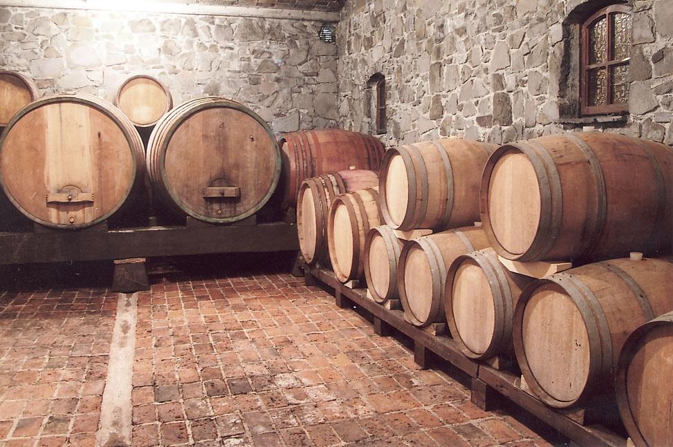 Vino in turizem Štekar, Goriška Brda gallery photo no.6
