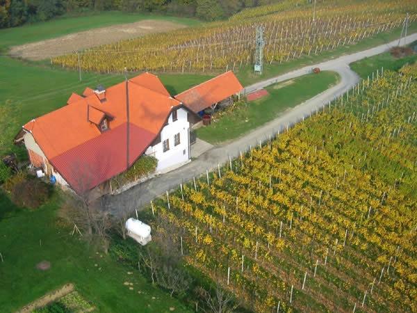 Turistična kmetija Dervarič, Pomurje gallery photo no.24