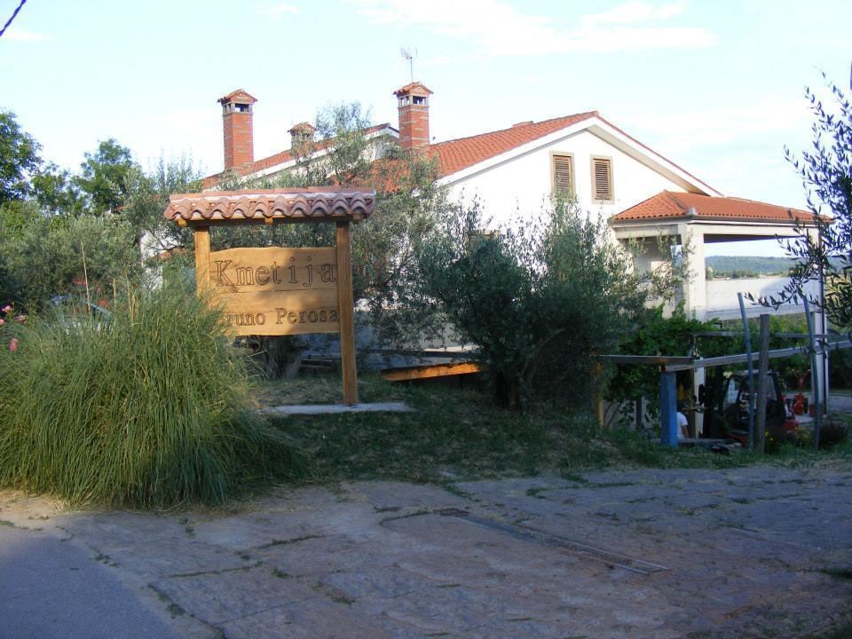 Kmetijstvo Peroša, domača zelenjava, Sečovlje gallery photo no.9