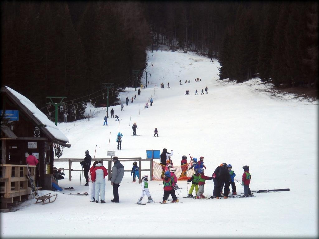 Ski center Pokljuka gallery photo no.5