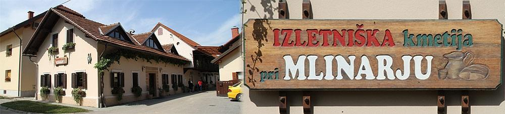 Turistična kmetija Pri Mlinarju, Žalec gallery photo no.7