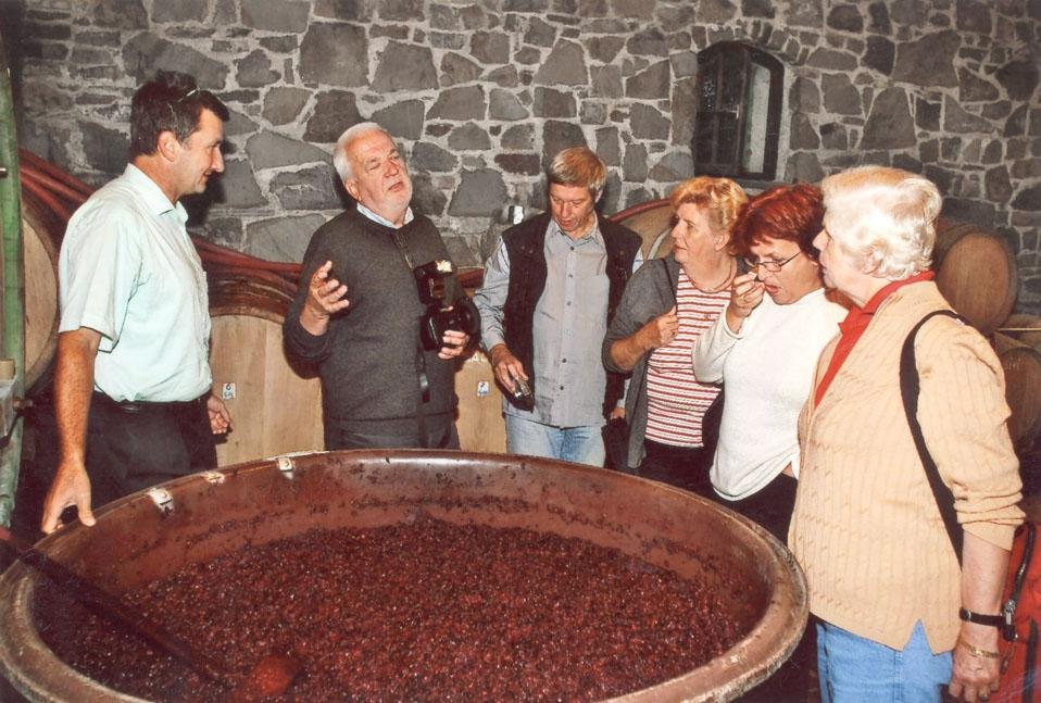 Vino in turizem Štekar, Goriška Brda gallery photo no.5
