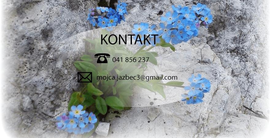Socialni servis Mojca, Kranj gallery photo no.2