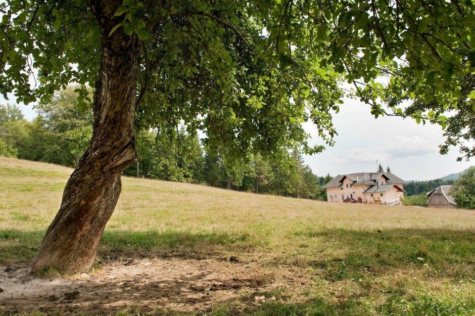 Kmetija Knavs, Bloke gallery photo no.15