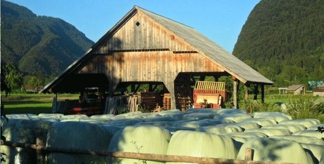 Turistična kmetija Pri Miklavu, Bohinj gallery photo no.2