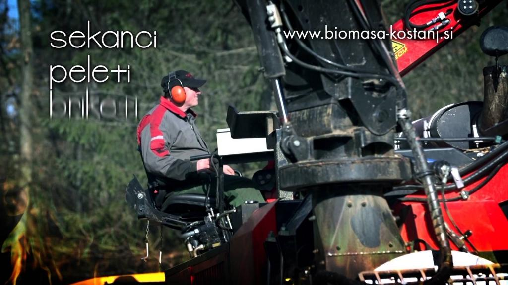 Biomasa Kostanj, Celje gallery photo no.3