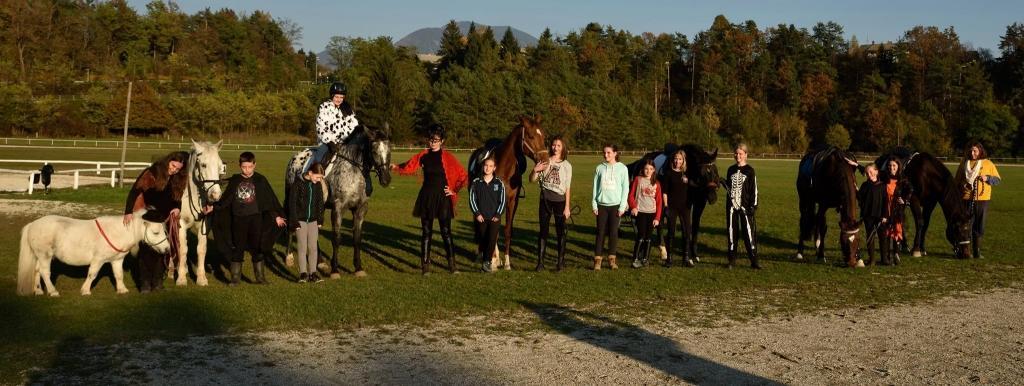Konjeniški klub Lesce - Bled gallery photo no.5