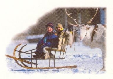 Kočije BAMS, gorenjska gallery photo no.12