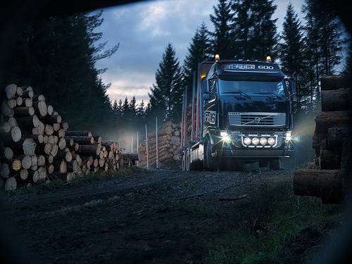 Transport MAHNE, Primorska gallery photo no.1