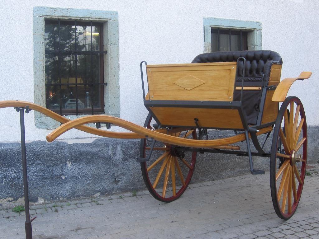 Kočije BAMS, gorenjska gallery photo no.4