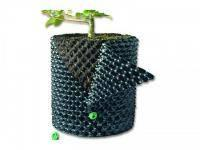 Superthrive, Agrogel, bio gnojila, svetila za rastlinjake, oprema za vzgojo rastlin - Budseason, Green Planet Nutrients, Green Planet gnojila gallery photo no.13