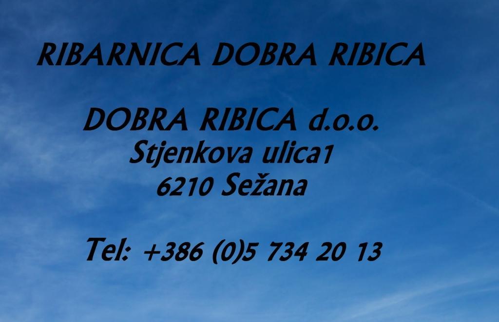 Ribarnica Dobra ribica, Sežana gallery photo no.0