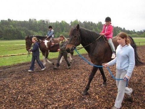 Konjeniški klub Lesce - Bled gallery photo no.19