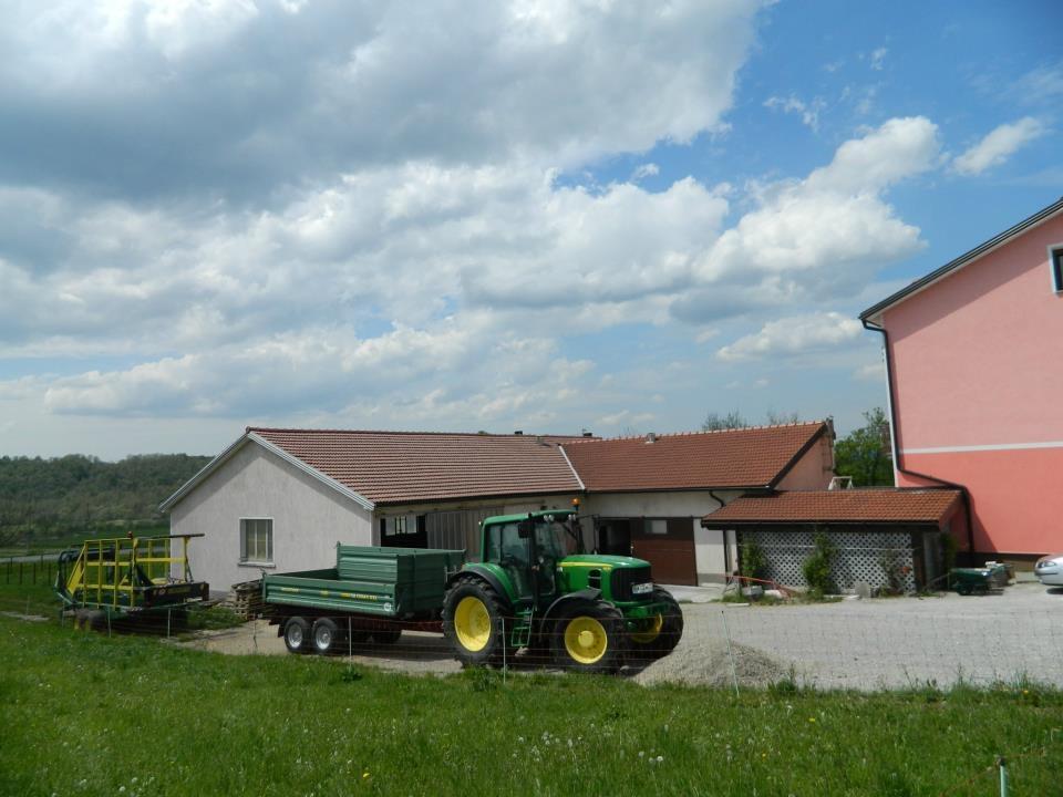 Družinska kmetija Štemberger, gozdne gobe, meso eko jagnjetinje, Ilirska Bistrica gallery photo no.2