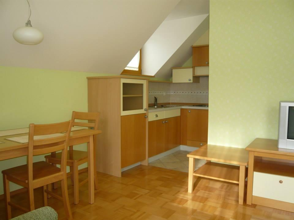 Apartmaji Hribar, Kamnik gallery photo no.7