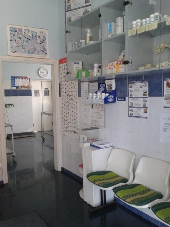 Veterinarska bolnica Vipava gallery photo no.8