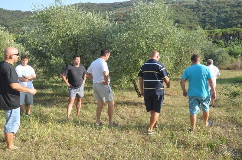 Kmetija in Izletniška kmetija Giassi gallery photo no.7