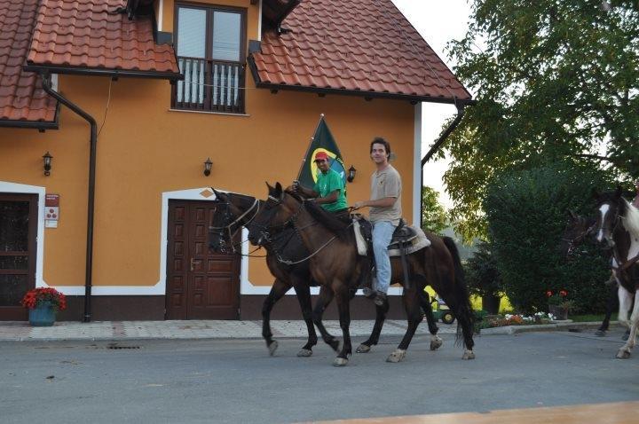 Ekološko turistična kmetija Vrbnjak, Mala Nedelja gallery photo no.5