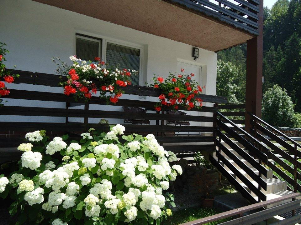 Apartma Groš, Kranjska Gora gallery photo no.1