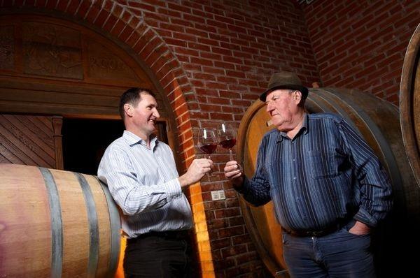 Vinogradništvo Druzovič, domače vino, Vitomarci gallery photo no.4