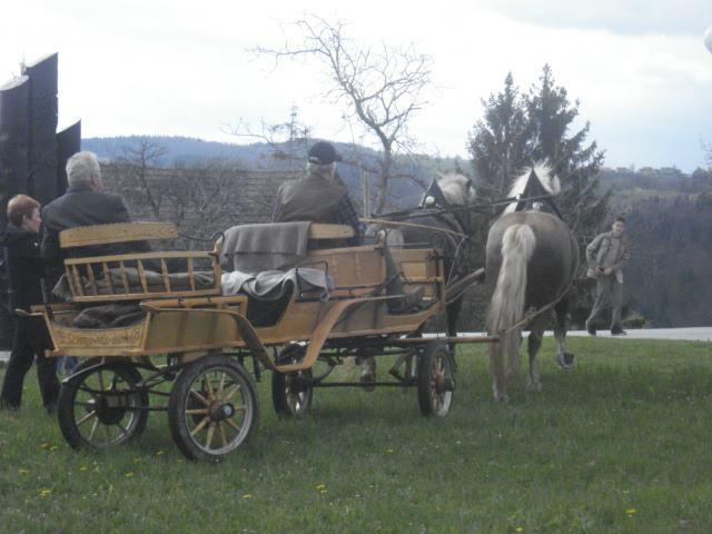 Kmetija Prošt, Litija gallery photo no.17