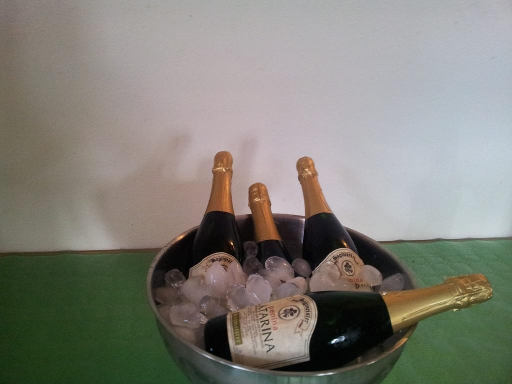 Sagmeister - Hiša pesmi in vina gallery photo no.10