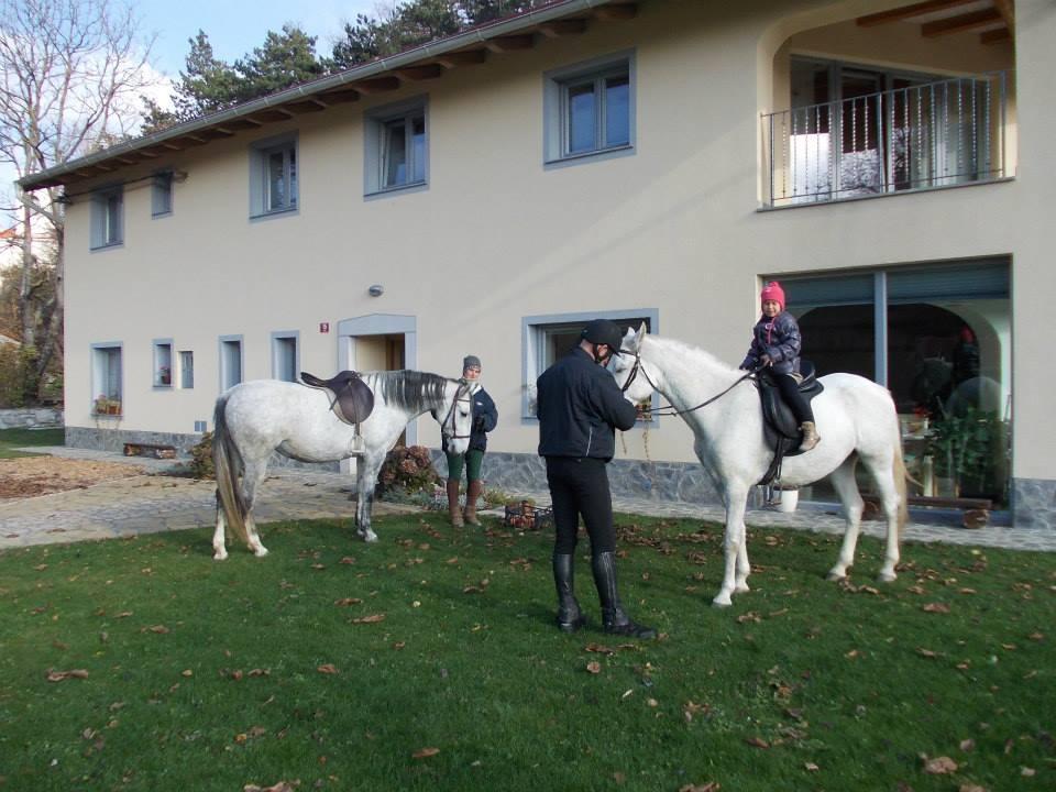 Domačija Lojtrnik, Apartmaji, Razdrto, Senožeče gallery photo no.0
