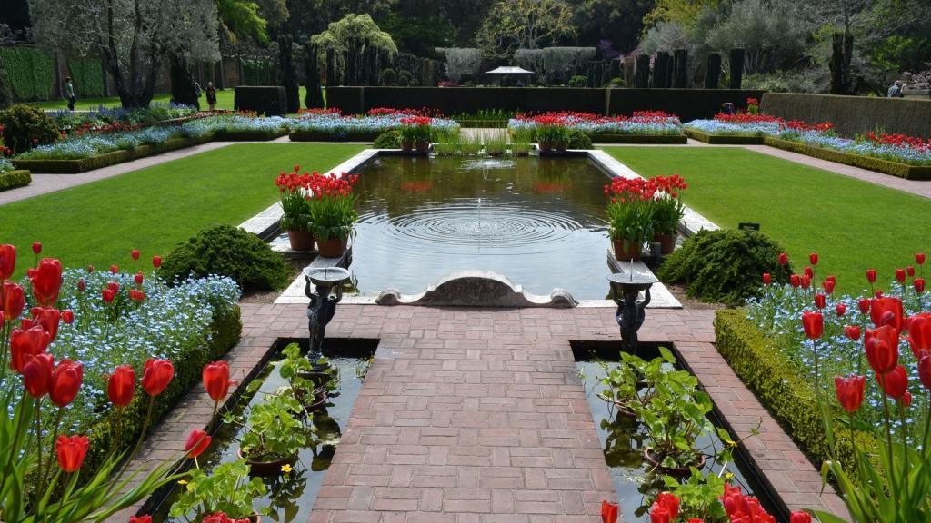 Palma vrtnarstvo urejanje okolice, Obala gallery photo no.0