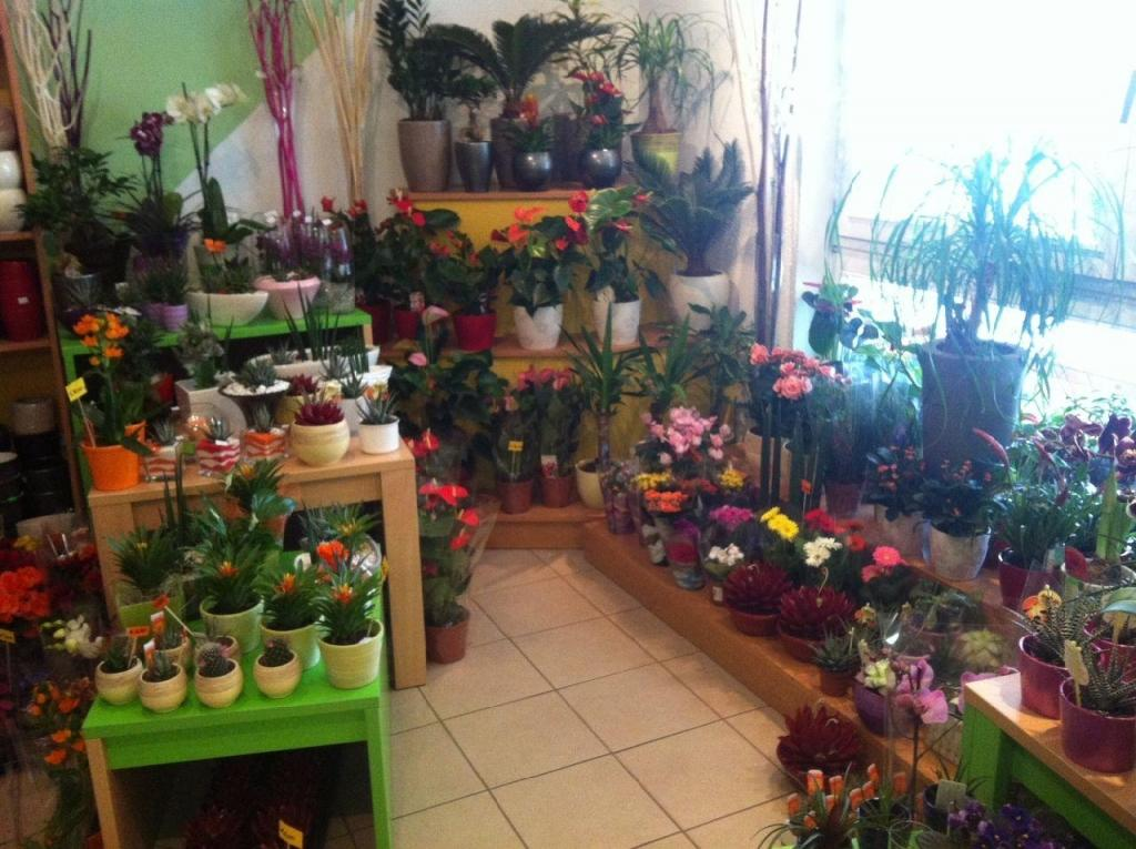 Cvetlični, Darilni Boutique Tila, Šmartno pri Litiji gallery photo no.2