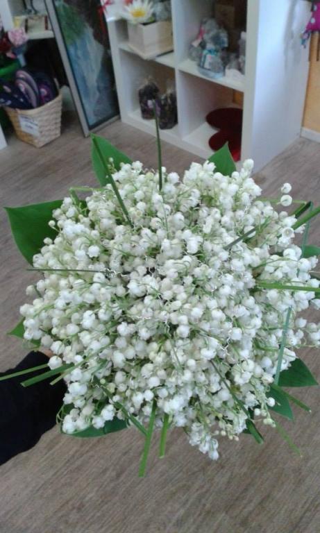 Cvetličarna Palaška, Laško gallery photo no.0