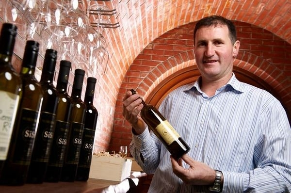 Vinogradništvo Druzovič, domače vino, Vitomarci gallery photo no.5
