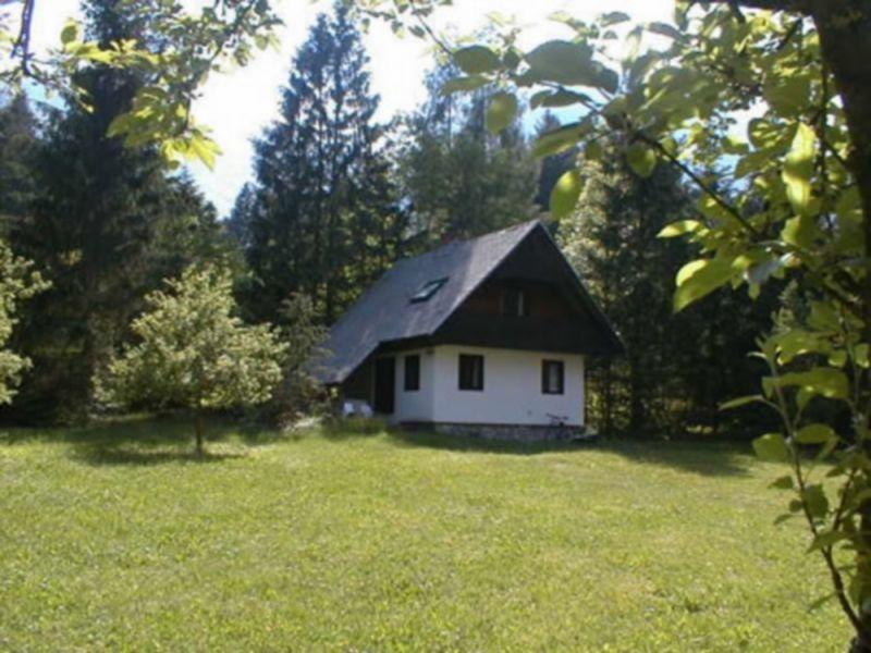 Accommodation, overnights, prenočitve Bohinj, Bohinj Lake, Vogel gallery photo no.33