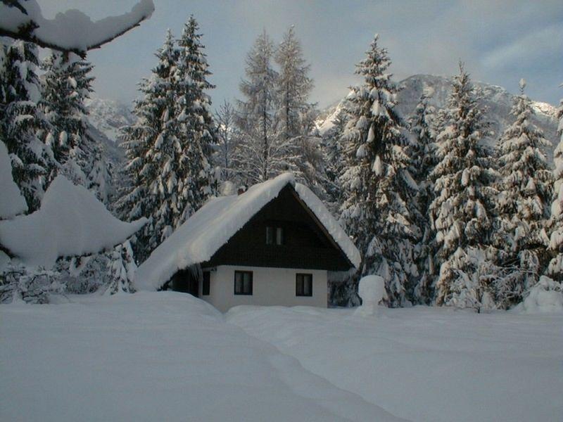 Accommodation, overnights, prenočitve Bohinj, Bohinj Lake, Vogel gallery photo no.34