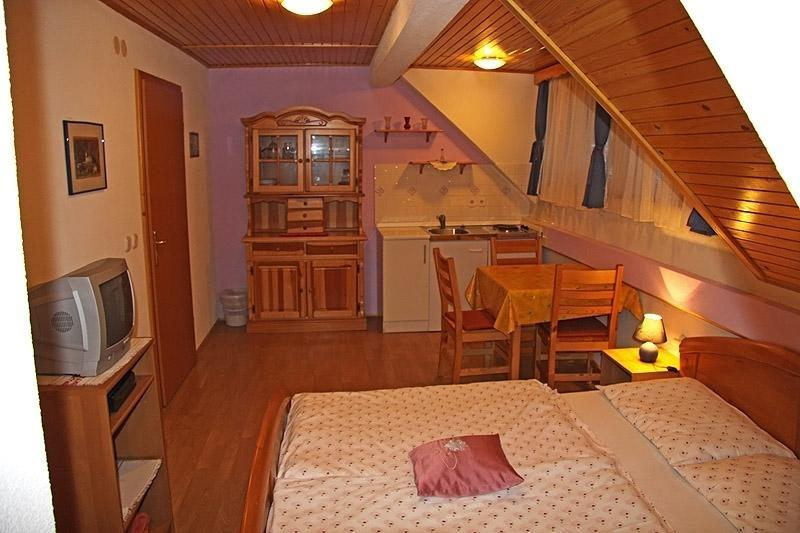 Apartmaji, sobe HODNIK, Bohinj gallery photo no.13